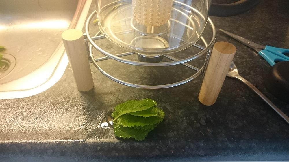 Blaadjes van citroenmelisse voor 2 kopjes thee